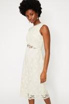Warehouse Cream Corded Lace Midi Dress