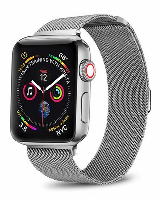 Posh Tech Silver Stainless Steel 42mm Apple Watch 1/2/3/4 Loop Band