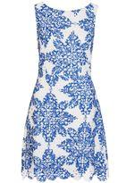 Quiz White And Blue Crochet Paisley Print Skater Dress