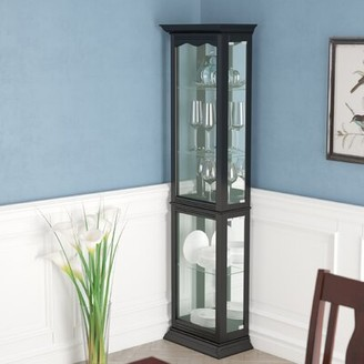 Astoria Grand Watkin Floor Standing Lighted Curio Cabinet Color: Black