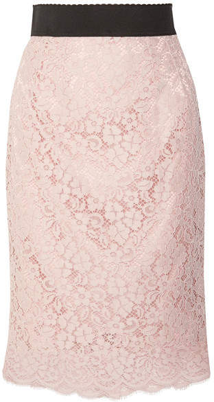 Dolce & Gabbana Corded Cotton-blend Lace Midi Skirt - Pastel pink