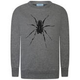 Lanvin LanvinBoys Grey Spider Print Sweater