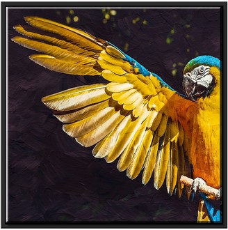 PTM Images Parrot Canvas with Floater Frame