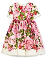 Dolce & Gabbana Short-Sleeve Rose Organza Dress, Pink, Size 8-12