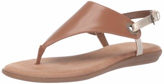 Aerosoles Women's in Conchlusion Sandal - Leather Toe Strap Summer Flat Shoe with Memory Foam Footbed (5M - Tan Gold)