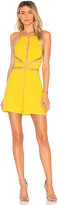 NBD Chels Dress