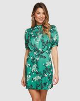 Oxford Paola Shift Dress