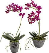 Asstd National Brand Nearly Natural Mini Phalaenopsis With Metallic Vase Set Of 2