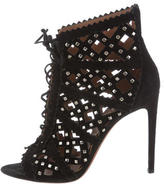 Alaia Studded Laser-Cut Booties