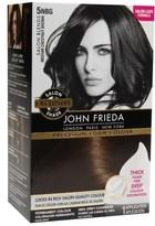 John Frieda Precision Foam Colour Chestnut Brown