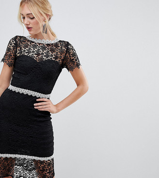 Paper Dolls Tall lace pencil dress with contrast lace trim and peplum hem in black