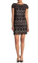 Eliza J Cap Sleeve Lace Shift Dress (Petite)