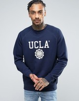 UCLA Big Logo Sweater