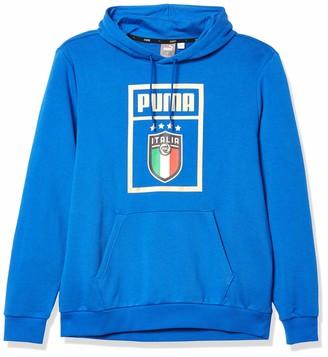 Puma Men's FIGC DNA Hoody