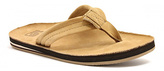 Lamo Chestnut Suncrest Flip-Flop - Men