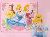 Disney Princess Fleece Throw Blanket - Princess Throw Blanket