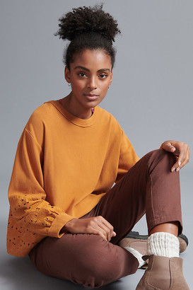 Pilcro And The Letterpress Pilcro Maura Eyelet Lace Sweatshirt By in Gold Size XS