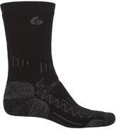 Point 6 Point6 Trekking Socks - Wool, Crew (For Men and Women)