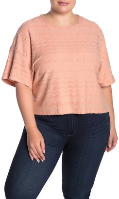 Madewell Solid Textured Dolman Sleeve T-Shirt (Regular & Plus Size)