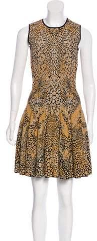 Alexander McQueen Patterned Mini Dress