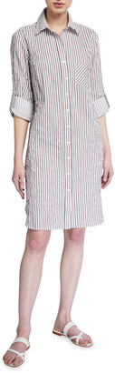 Finley Alex Textured Stripe Button-Down Shirtdress