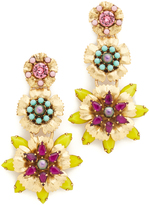 Elizabeth Cole Narissa Earrings