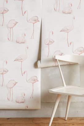 Flamingos Cole & Son Wading Wallpaper