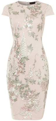 Phase Eight Annalise Placement Embroidered Dress