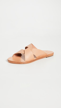 beek Pigeon Slides