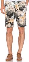 Gitman Brothers Shorts