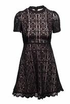 BB Dakota Adelina Lace Dress