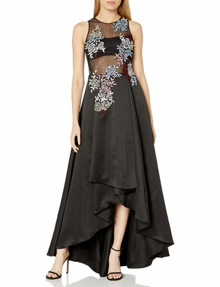 Betsy & Adam Women's Emroidered Illusion Gown