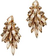 Elizabeth Cole Sydney Earrings