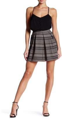 Dee Elly Pleated Embroidered Skirt