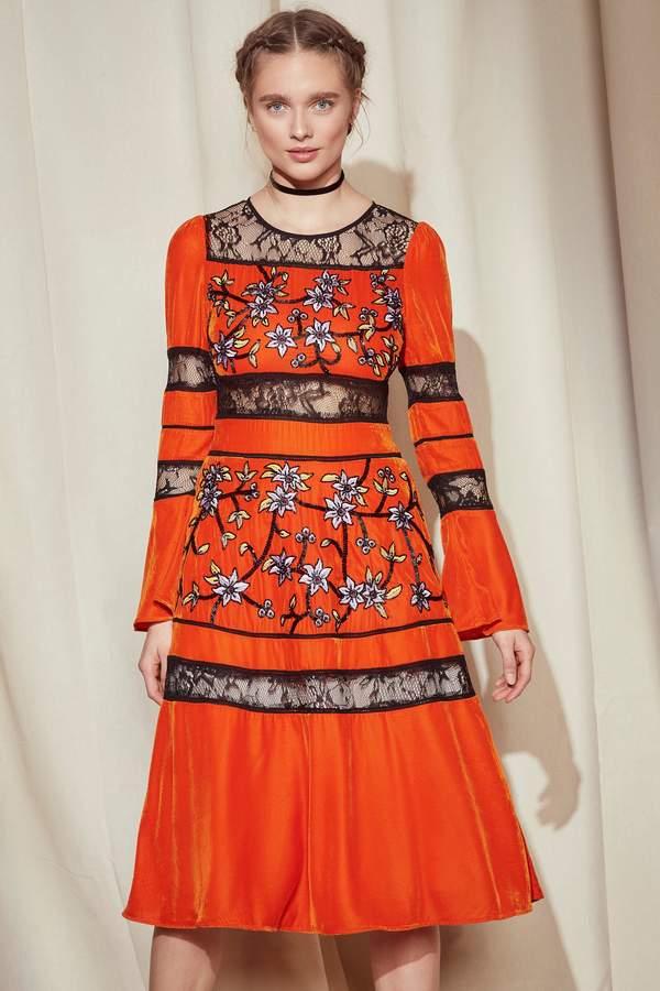 Nasty Gal Studio Maya Velvet Dress