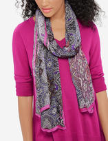 The Limited Paisley Scarf