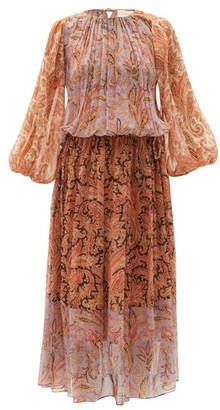 Zimmermann Botanica Ruched Paisley-print Silk-georgette Dress - Pink Print