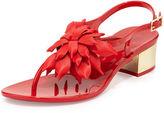 Kate Spade Davina Flower Jelly Low-Heel Thong Sandal