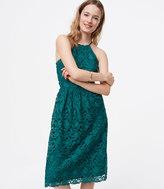 LOFT Lace Halter Dress