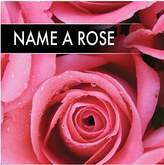 Very Name a Rose