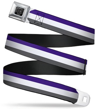 Buckle Down Buckle-Down Buckle-Down Seatbelt Belt Stripes XL Accessory