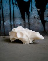 N. Deer Skull Soy Wax Candle