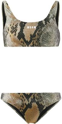 MSGM snakeskin-print bikini