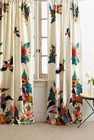 Anthropologie Rebecca Rebouche Soaring Starlings Curtain