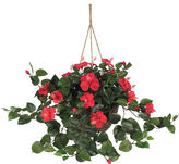 Asstd National Brand Nearly Natural Hibiscus Hanging Basket