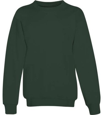 Hanes Boys Ecosmart Fleece Crew Neck Sweatshirt, Sizes 4-18