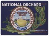 Citrus Kitchen Mat