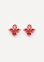 Bebe Floral Stud Earrings