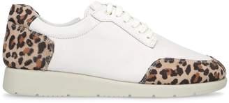 Carvela Leopard Print Comma Sneakers
