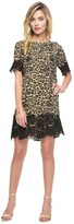 Juicy Couture Outlet - TANGIER LEOPARD LACE BORDER DRESS